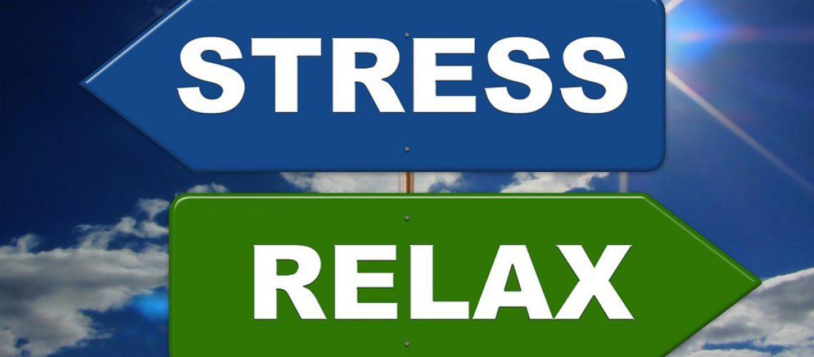 papilio_blog_stress_relax